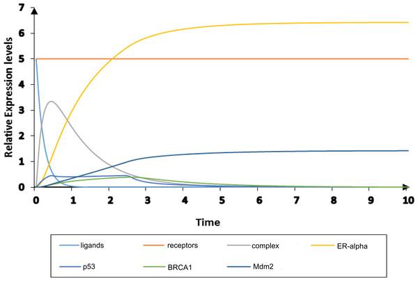 Simulation of diseased HPN model.