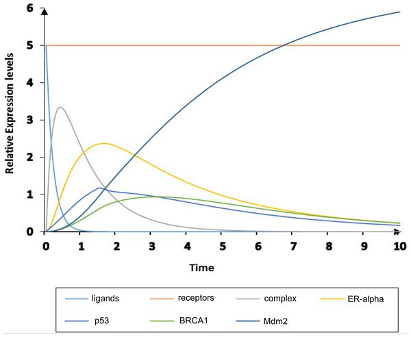 Simulation of homeostatic HPN model.