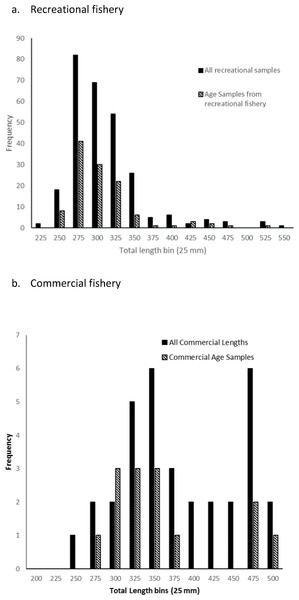 Total length frequency plots of all schoolmaster sampled from the (A) recreational and (B) commercial fisheries operating along the east coast of Florida compared to those fish selected for age structure sampling.