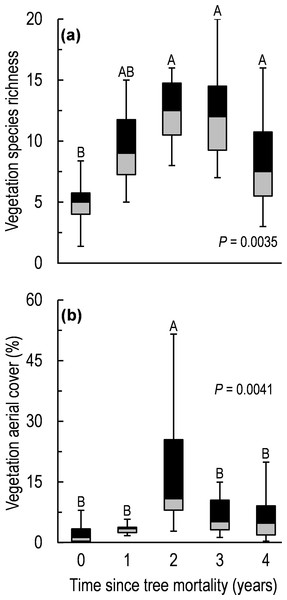 Vegetation species richness (A) and aerial cover (B) along a five-year chronosequence of insect-induced tree mortality.