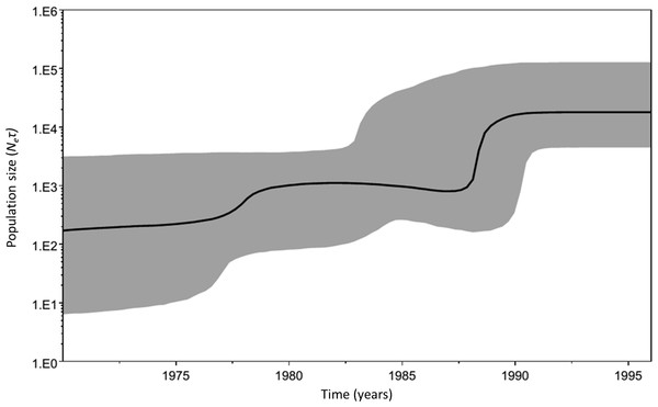 Historical demographic trends of the median estimate of the maternal effective population size over time (bold line) constructed using a Bayesian skyline plot approach based on concatenated 16S-COI-Cyt b haplotypes of M. neritoides sampled in 1992, 1993 and 1996.