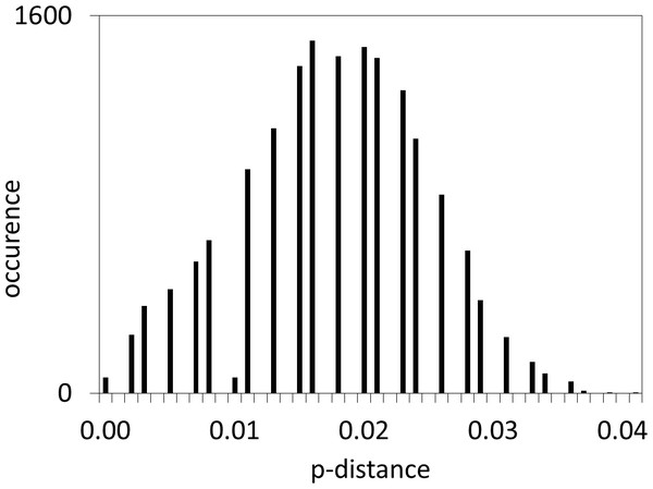 Distribution of COI pairwise p-distances in M. neritoides.