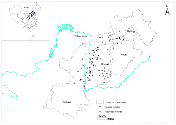 Changes in the distribution records of the brown eared-pheasant in China.