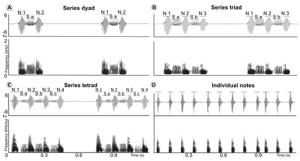 Waveform and spectrogram of the syllable types.