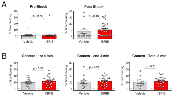 ISRIB does not show a beneficial effect on fear memory in a contextual fear conditioning paradigm.