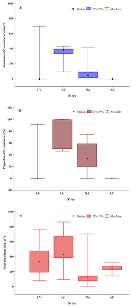 Abundance (A) and proportion (B) of Pontoscolex corethrurus and total earthworm community abundance (C) along an altitudinal gradient.