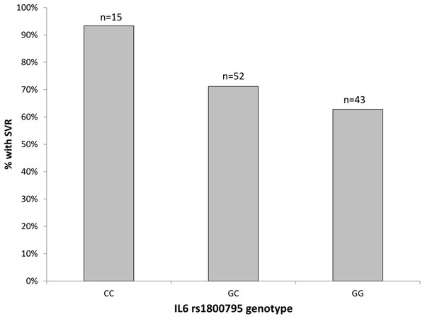 The percentage of patients with SVR by the rs1800795-IL6 genotypes.