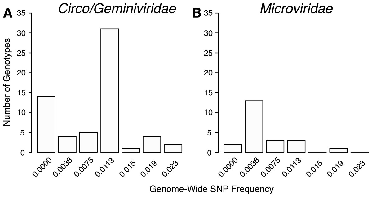 Evolution and Diversity of the Microviridae Viral Family ...