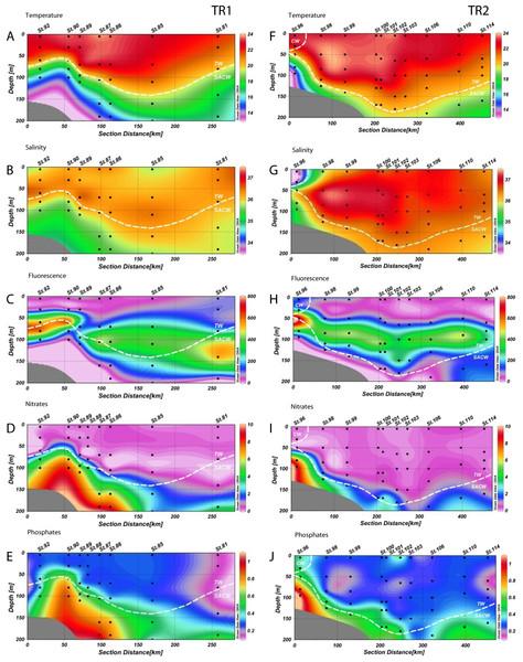 Distribution of environmental variables.