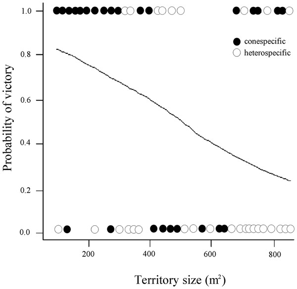 Probability of victory of resident male white-eared hummingbirds in relationship to the size (area) of the territory and the identity of the intruders.