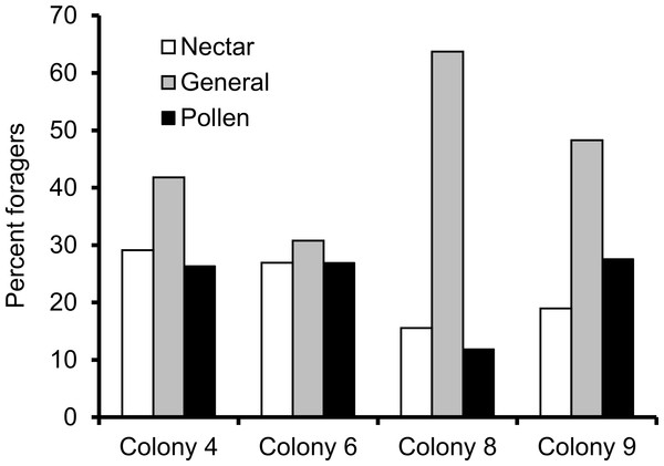Proportion of foragers in each colony with at least 15 foraging observations that were either nectar specialists (white bars), pollen specialists (black bars) or generalists (gray bars).