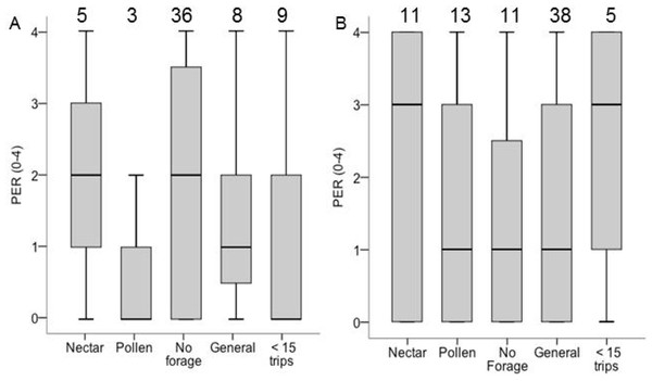 Boxplots PER scores for each foraging category in colony 6 (A) and colony 8 (B).