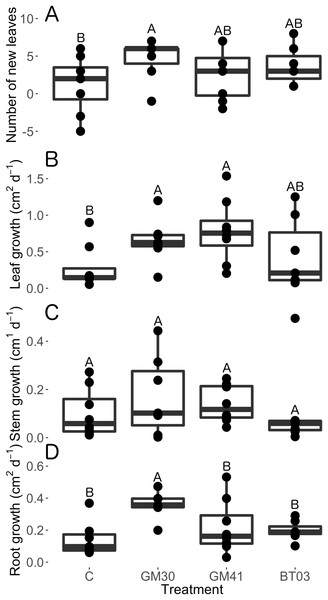 Structural traits of Populus trichocarpa that were not inoculated with bacteria (no microbe control) (n = 8), were inoculated with Pseudomonas GM30 (n = 7), Pseudomonas GM41 (n = 8), or Burkholderia BT03 (n = 7).