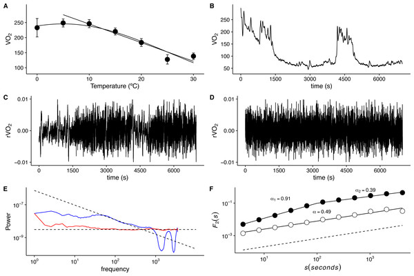 Long-term correlations of metabolic rate fluctuations in Mus musculus.