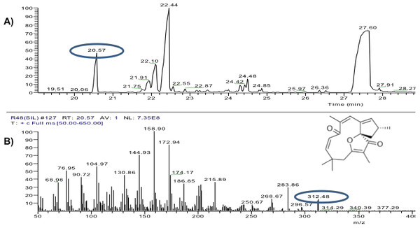 Analysis of hexane extracts of Jatropha curcas by GC-MS.