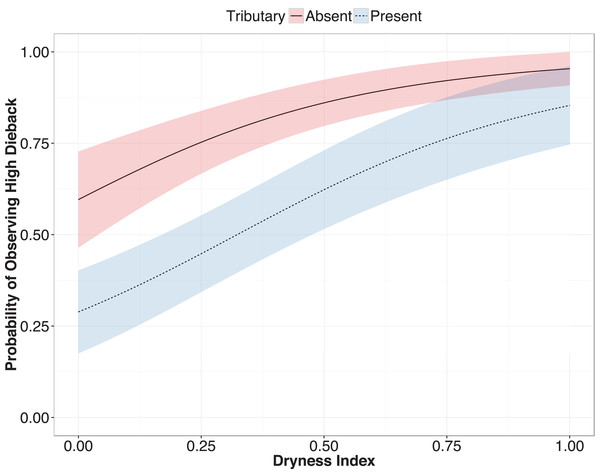 Predicted probability of observing high ana tree dieback in relation to upstream tributary presence and dryness.