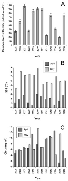Annual changes in (A) mean (± SE) barnacle recruit density, (B) April and May SST, and (C) April and May Chl-a between 2005–2016.