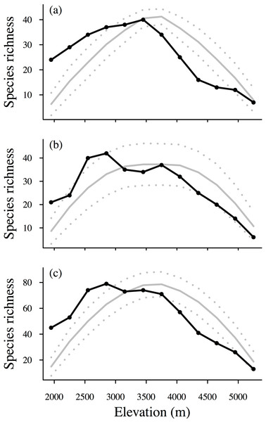 Elevational patterns of interpolated species richness.