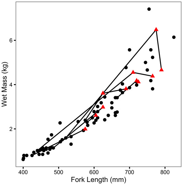 Mass-length scatterplot for Ferox Trout Caught by Angling.
