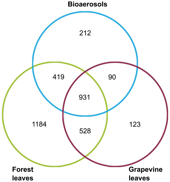 Venn diagram giving the number of OTUs shared between the airborne, forest foliar and vineyard foliar communities.