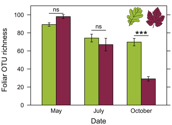 Richness of foliar fungal community in oak (green) and grapevine (red), depending on the sampling date.