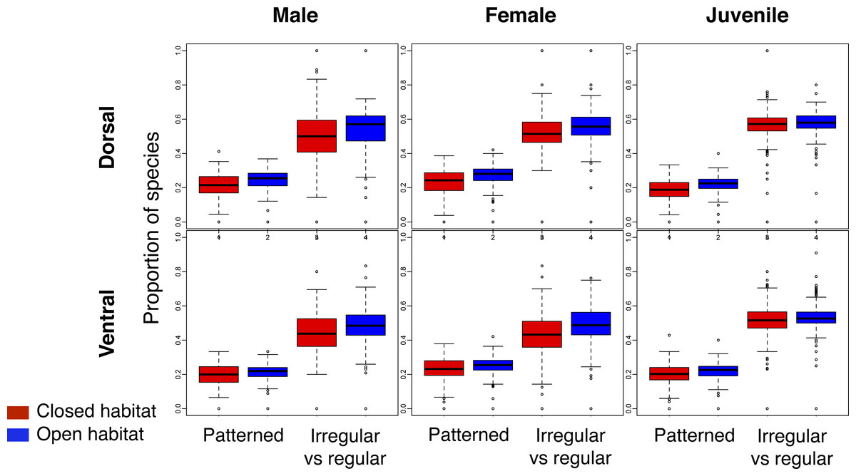 breeding patterns This study evaluated the influence of the water and air temperatures, pluviosity  and photoperiod on the breeding season of goniopsis cruentata (latreille, 1803), .