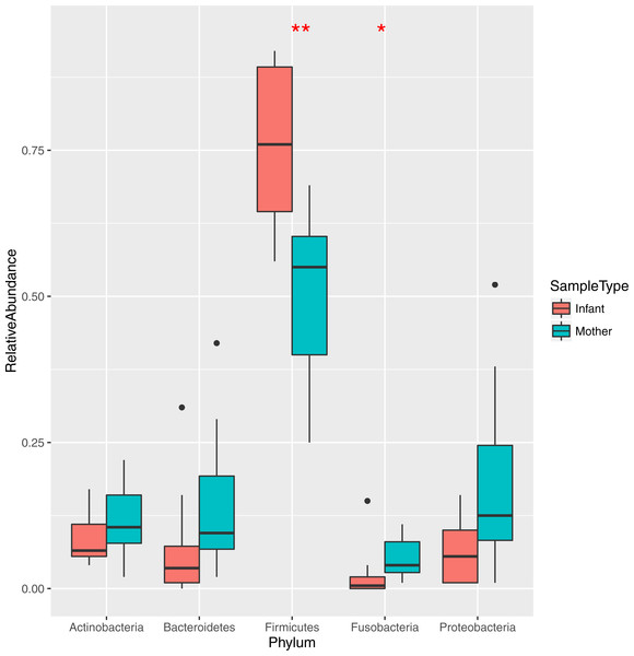 Relative abundance of the major bacterial phyla in mother and infant saliva samples.