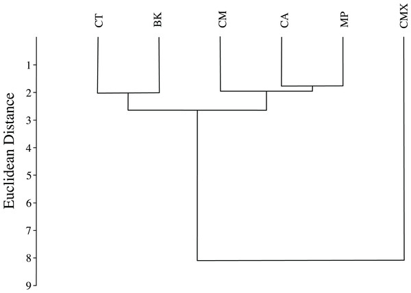 Dendrogram formed by means of the UPGMA method using squared Euclidean distances of ACP reared on different host plant species (BK, Bergera koenigii; CA, Citrus aurantifolia; CM, Citrus macrophylla; CMX, Citrus maxima; CT, Citrus taiwanica; MP, Murraya paniculata).