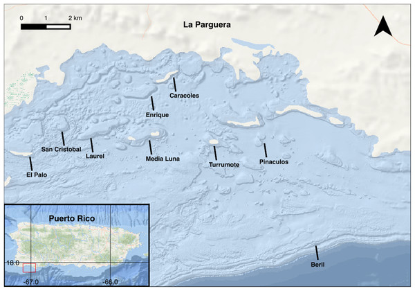 Map of La Parguera, Puerto Rico with study sites.