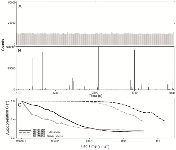 C-terminal truncated HCV core protein and unspecific nucleic acids (DNA or RNA) interaction analyzed by fluorescence correlation spectroscopy.