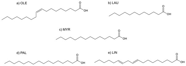 Formulas of (A) oleic acid, (B) lauric acid, (C) myristic acid, (D) palmitic acid, (E) linoleic acid.