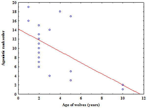 The relation between the agonistic rank order based on submission and the age of wolves.