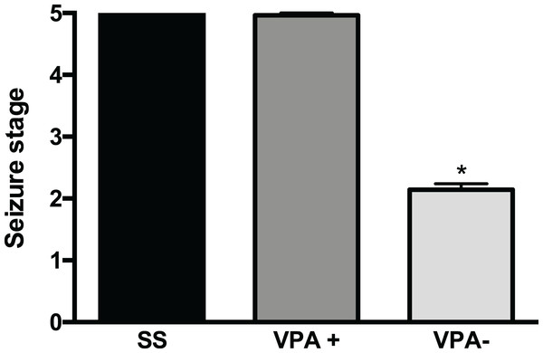 Severity of convulsions induced by pentylenetetrazole (PTZ) in rats prenatally exposed to valproic acid (VPA).