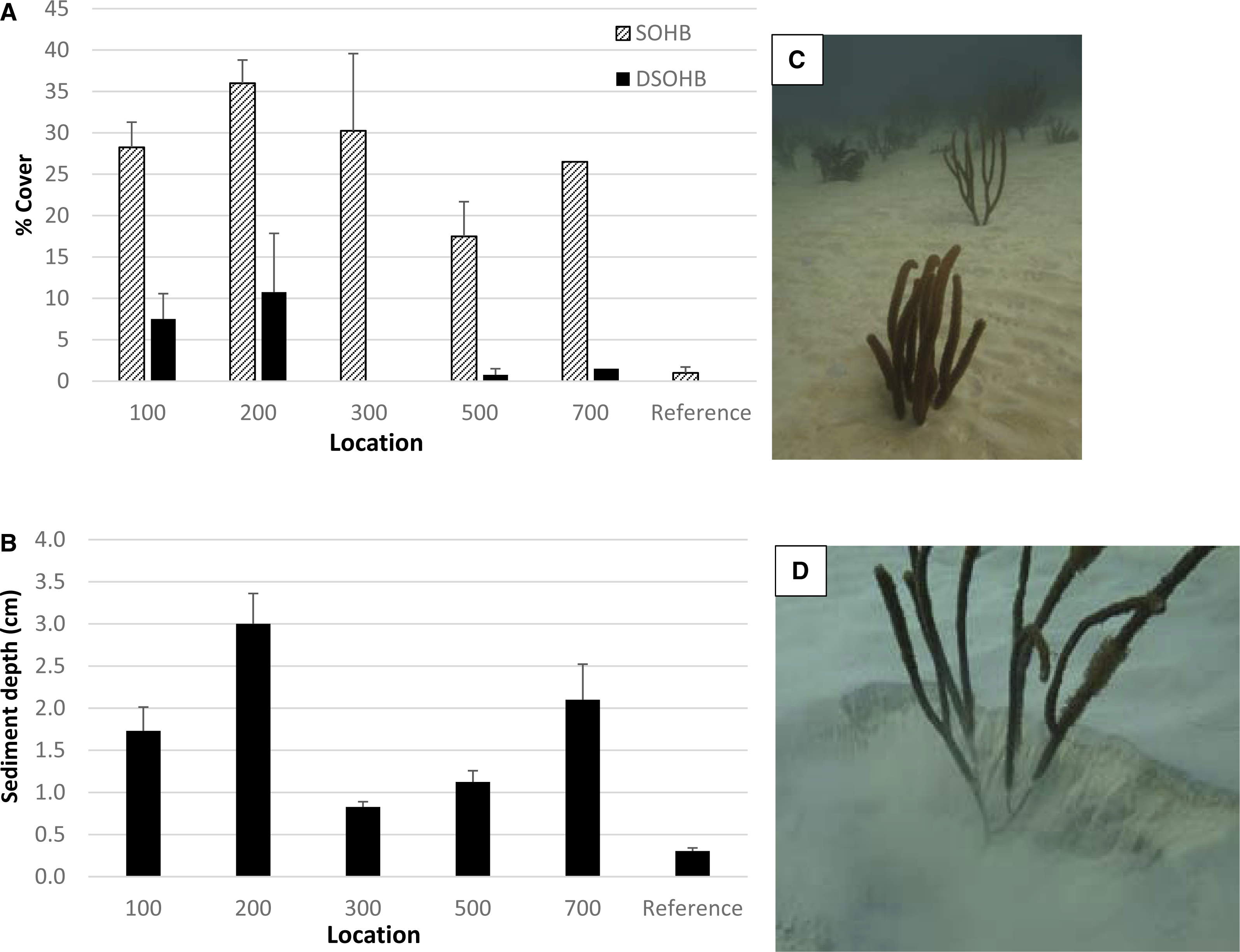 Detecting sedimentation impacts to coral reefs resulting from