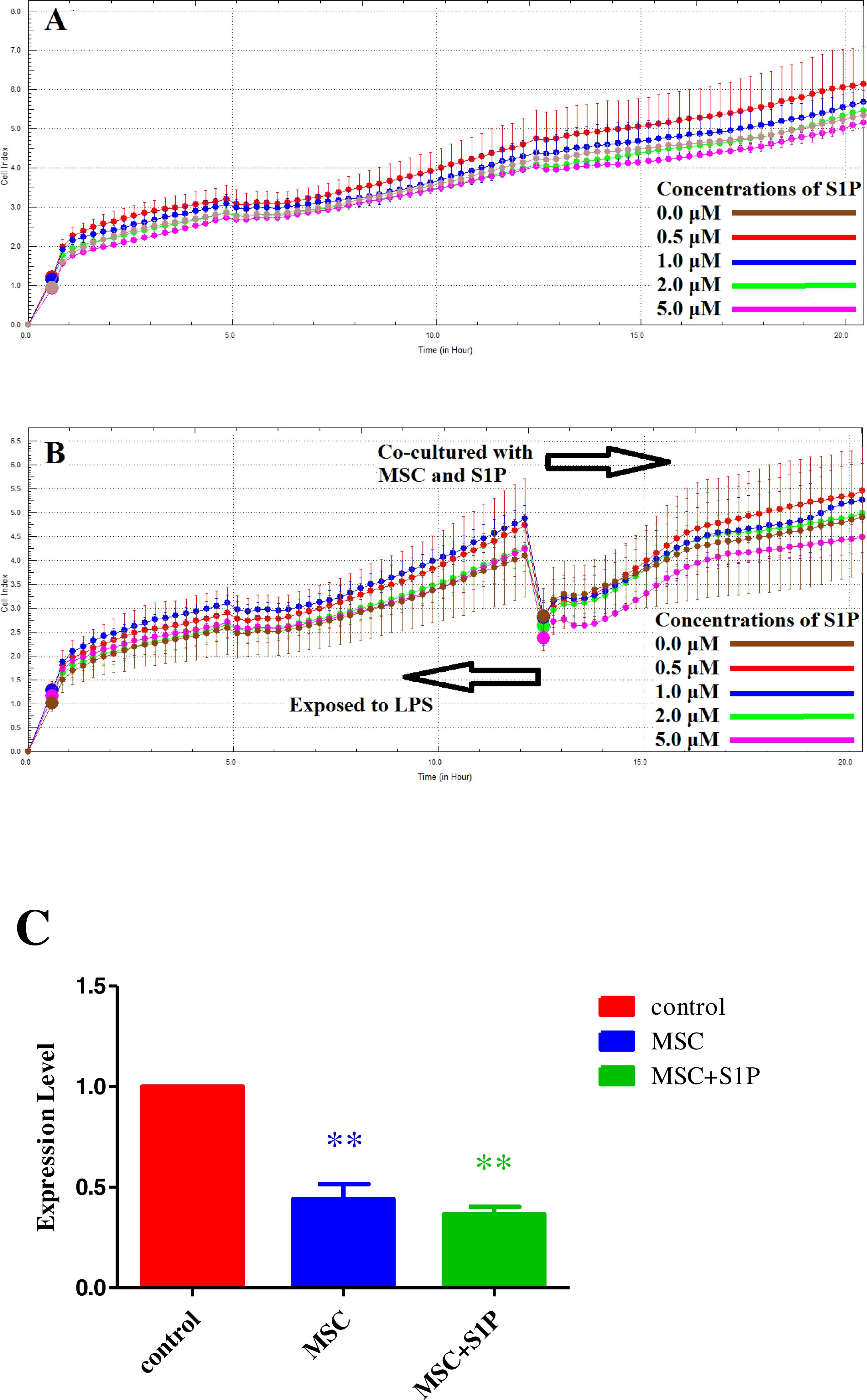 la moitié 6a023 0c9ff Regulation of S1P receptors and sphingosine kinases ...