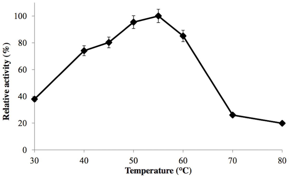 effect of temperature on enzyme activity Free essay: aim: the aim of the experiment is to test the effect temperature has on the activity of the enzyme rennin hypothesis: i believe the rate of.