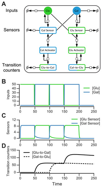 Molecular circuit implementation of a nutrient transition counter.