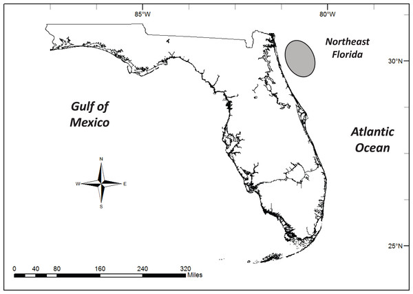 Lionfish collection region (shaded oval) off the coast of northeast Florida.