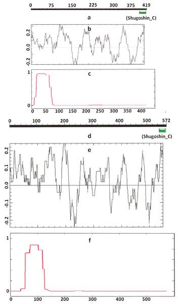 Three parameters of A. thaliana SGO2 (mitotic) and SGO1 (meiotic) shugoshins.