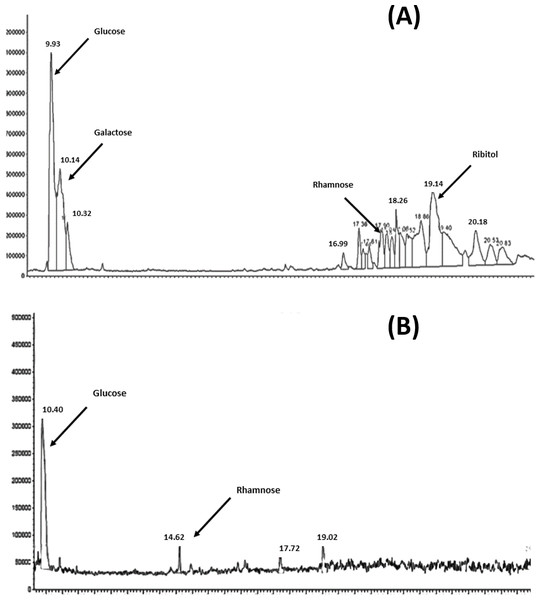 GC–MSD total ion chromatograms for S. pneumoniae serotype 6A/B AND 19F at the purified polysaccharides stage.