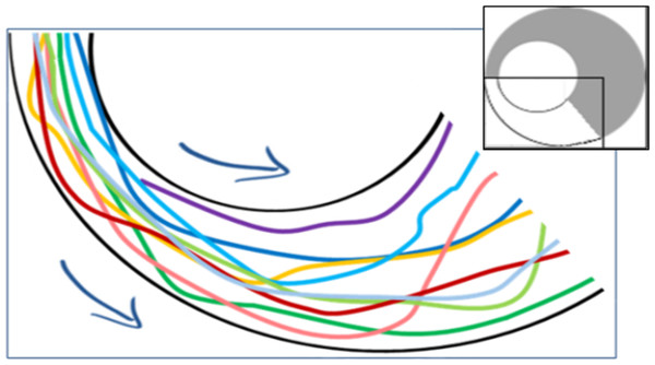 Example trajectories of locusts leaving the funnel (overall 10 nymphs passing within a few seconds through the section marked white in the inset).