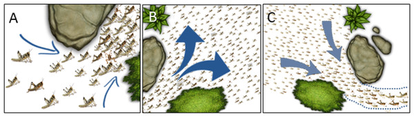 Cartoon showing possible swarm behavior in nature.
