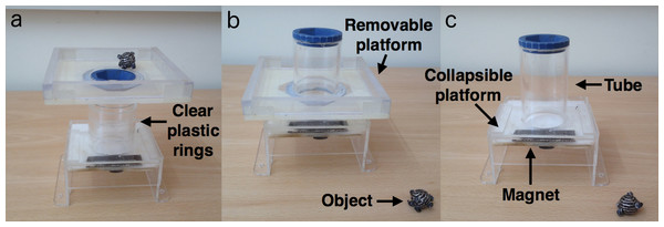 Experiment 1 set up: stages of the object insertion apparatus.