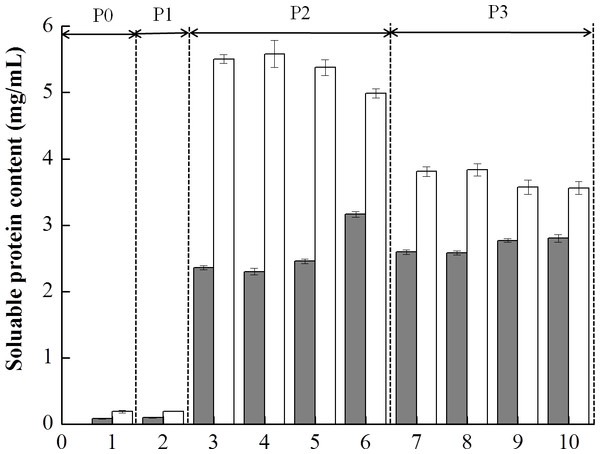 Soluble protein content (mg/mL) of the mixed soy-cow protein samples subjected to in vitro gastrointestinal simulated digestion (GIS): 1-before the GIS (P0); 2-after buccal digestion (P1); 3,4,5,6-represented samples taken at 1 min, 5 min, 25 min and 60 min of gastric digestion (P2); 7, 8, 9, 10- represented samples taken at 1 min, 5 min, 30 min and 120 min of intestinal digestion (P3).