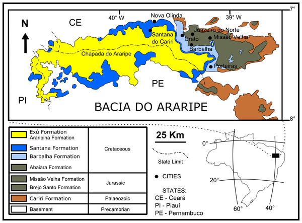 Geological setting of the Crato Member.
