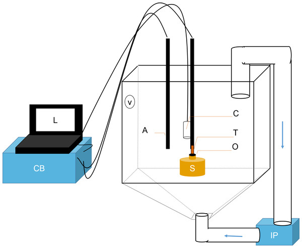 Schematic representation of flowmeter and experimental tank.
