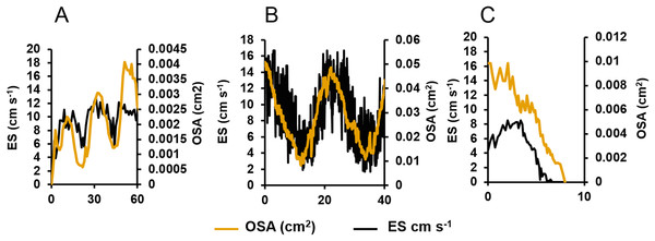 Centreline excurrent speeds (ES) and osculum cross-sectional area (OSA) for three different oscula exhibiting different contractile behaviours.