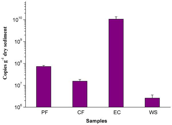 Q-PCR Image of M. oxyfera bacteria.