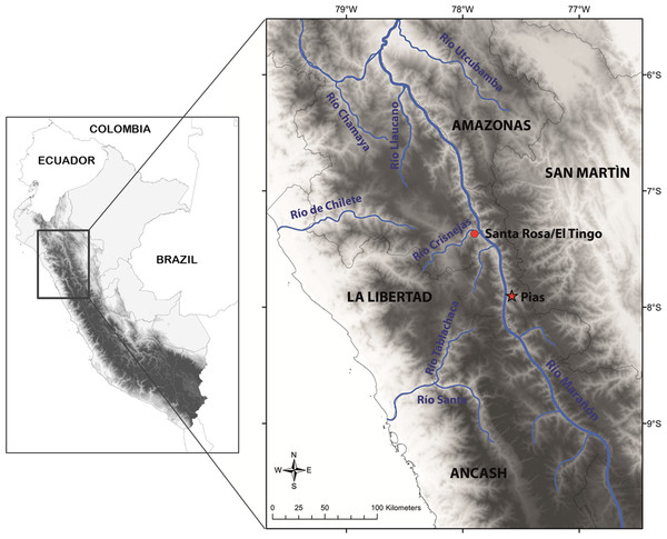 Map with type locality of Tantilla tjiasmantoi sp. nov. (red star), and locality of male paratype (red dot) in the northern Peruvian Andes.