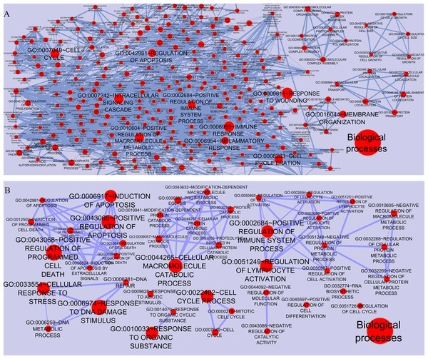 Functional categories of the networks were visualized using the Enrichment map plugin of the Cytoscape.